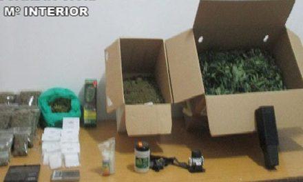 La Guardia Civil detiene a un vecino de Casas del Castañar con 600 bolsas de marihuana preparadas para su venta