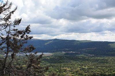 "Plasencia saca a licitación el aprovechamiento de caza de ""Valcorchero"" por un canon mínimo de 780 euros al año"