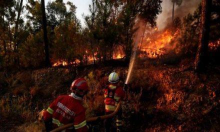 Un gran incendio dividido en dos partes avanza desde este miércoles por la cuenca del río Tajo en Portugal