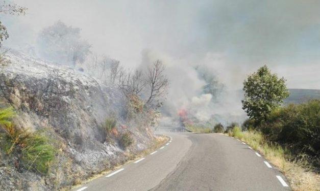 Medios terrestres continúan trabajando en la extinción del incendio declarado este sábado en Cabezabellosa