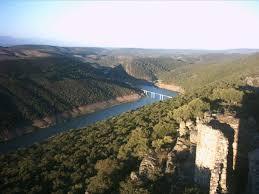Ecologistas de Extremadura pide a la Junta que prohíba la celebración de una montería este sábado  en Monfragüe