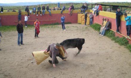 """La Comisión de Festejos de Moraleja celebrará este viernes una fiesta campera en la Finca """"Los Carrascos"""""""