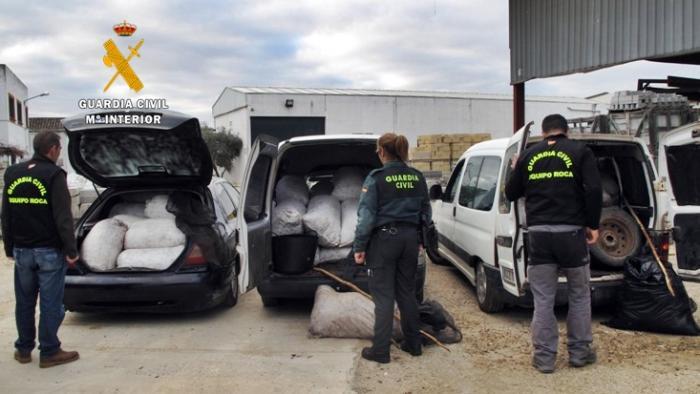 Detienen a seis ciudadanos rumanos por el robo de 12.500 kilos de aceitunas en la provincia de Badajoz