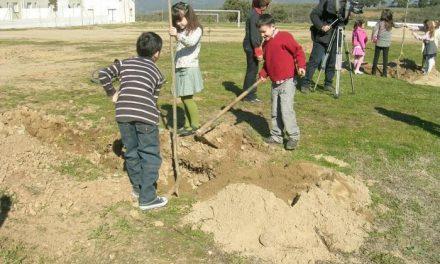 Unos 60 alumnos de Moraleja participarán en una actividad de reforestación en la antigua escombrera