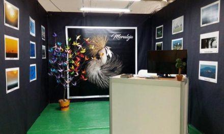 Moraleja contará un año más con stand propio en la Feria de Turismo Ornitológico de Monfragüe