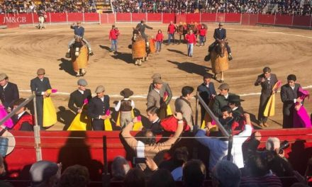 Un total de ocho orejas se cortaron en el festival taurino con picadores celebrado en Coria este domingo