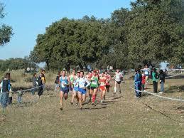 El XLVIII Gran Premio de Cáceres Campo a Través celebrado en Moraleja está entre los mejores del país