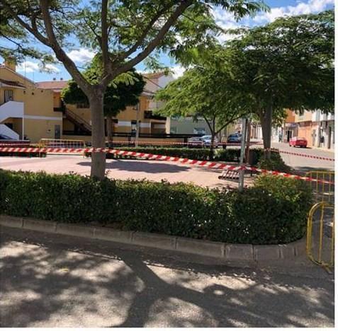 Moraleja continúa con la retirada controlada de enjambres de abejas de los espacios públicos