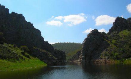 La Asociación de Desarrollo del Valle del Alagón realizará un programa de prácticas de voluntariado ambiental