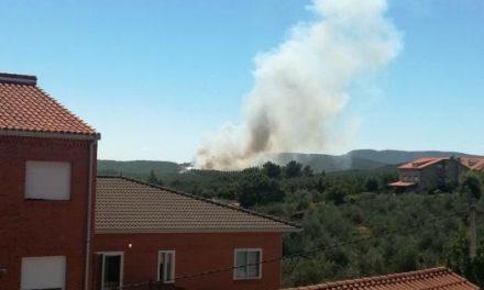 El Plan Infoex da por estabilizado el incendio registrado en una zona de pinar de Valverde del Fresno