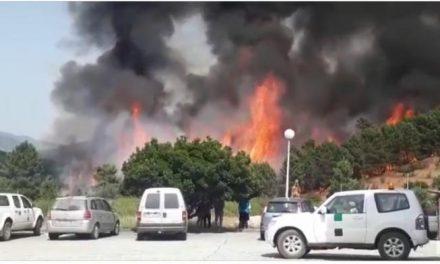 El Plan Infoex da por estabilizado el incendio que afecta desde la tarde de este jueves a Pinofranqueado