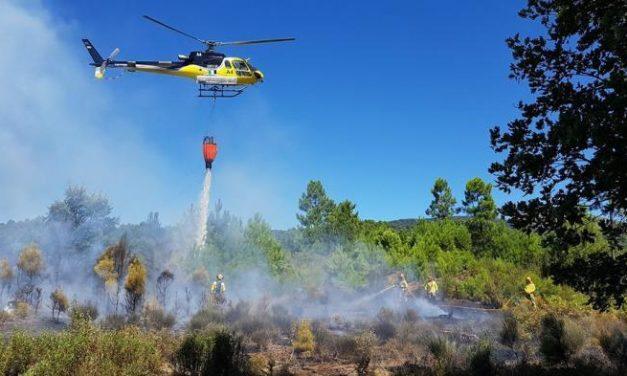 Declarados de utilidad pública los trabajos forestales en los valles del Jerte y La Vera