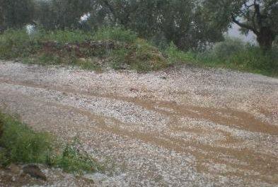 La lluvia y el pedrisco ocasionan daños en cultivos de Huélaga, Riolobos y Holguera
