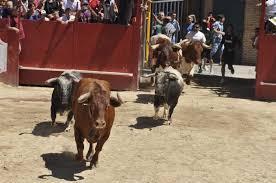 Moraleja destinó más de 221.000 euros a las fiestas de San Buenaventura de este año