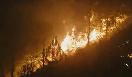 Medios del INFOEX y la BRIF de Pinofranqueado trabajan en la extinción del incendio de La Fragosa