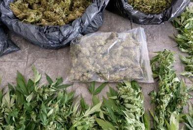 La Guardia Civil encuentra 9 kilos de marihuana en una casa  de Acebo cuando asistía a su moradora por una caída