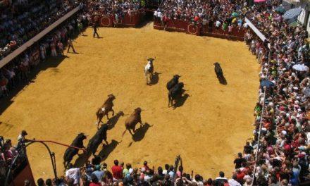 Los novillos de Pérez Villena protagonizan un encierro rápido y limpio que se retrasó por dos mansos rezagados