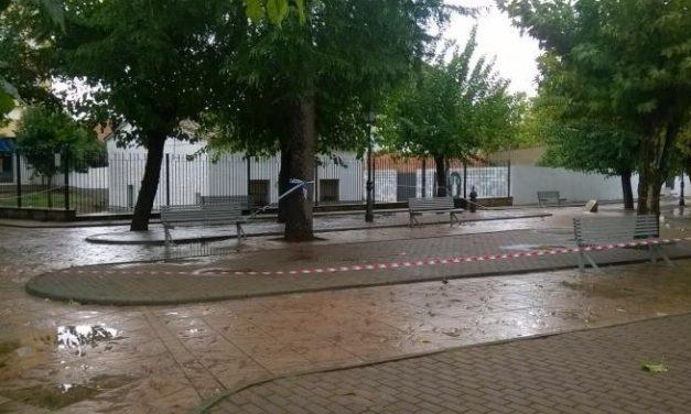 Moraleja contará con el primer parque infantil temático dedicado al sector de la ganadería