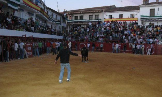 Las fiestas de Moraleja finalizan con un detenido y varias personas denunciadas por varios altercados