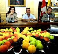 La plaza Mayor de Cáceres acoge un gran mosaico con frutas el jueves, en un acto programado por UPA