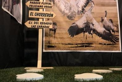 Moraleja y la Sierra de Gata se presentarán en FIO como escenario donde disfrutar del orniturismo