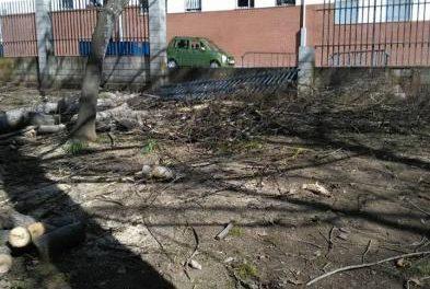 """Ciudadanos Coria denuncia el """"peligroso estado"""" en el que se encuentra el Parque de Cadenetas"""