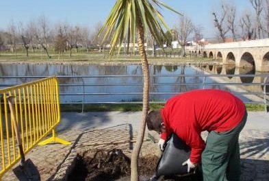 Moraleja continúa con el proceso selectivo para cubrir tres puestos de peón de jardinería