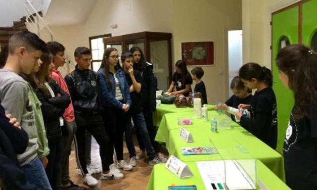 Más de una decena de jóvenes científicos participa en la III Feria de Ciencias de Moraleja