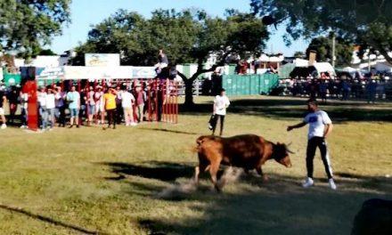 La teniente alcalde de Vegaviana hace un balance positivo de las fiestas en honor a San Isidro