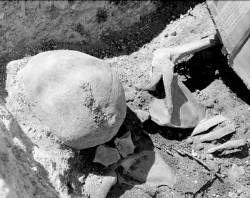 Hallado un cadáver completo en una fosa común junto al cementerio durante unas excavaciones en Mérida