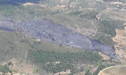 El Plan INFOEX logra controlar un incendio forestal declarado en Torrecilla de los Ángeles