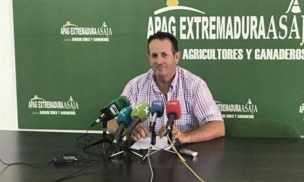 APAG Extremadura Asaja pide la convocatoria del Consejo Asesor Agrario para abordar la sequía