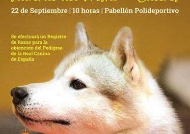 Valverde del Fresno acogerá el próximo día 22 un Concurso Nacional Canino