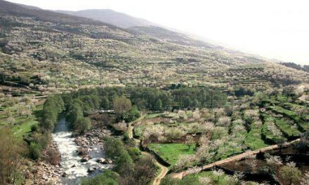 Los turistas de la provincia de Cáceres destacan su naturaleza y su patrimonio cultural