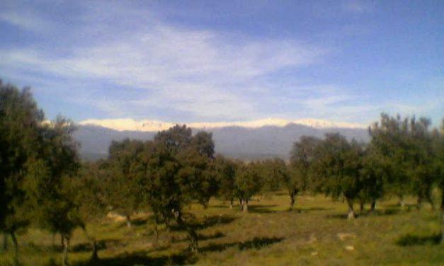 Extremadura recibirá 1.186 millones de euros de Europa para los planes de desarrollo hasta el año 2013