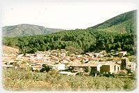 La localidad serragatina de Descargamaria celebra la fiesta del 'pino marro', hoy con el arrastre del pino