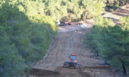 Comienza la época de riesgo bajo de incendios forestales en la comunidad autónoma de Extremadura