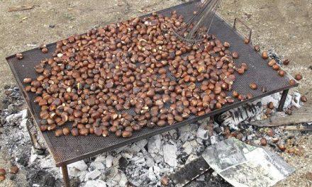 Los colegios de Moraleja celebran el día de la chiquitía para recuperar las tradiciones locales