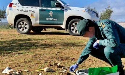 Investigadas doce personas por delitos de maltrato animal al dar muerte a 46 perros en Tierra de Barros