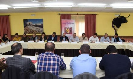 Empresarios de Coria trasladan sus necesidades a la Diputación para el desarrollo de la comarca