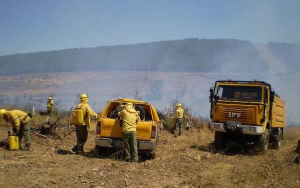 El Infoex interviene en 32 incendios forestales en los últimos siete días