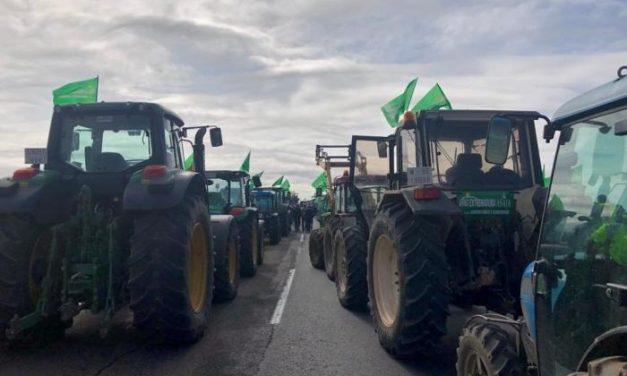 APAG Extremadura Asaja cifra en más de 12.000 los participantes en los cortes de carreteras en  Badajoz