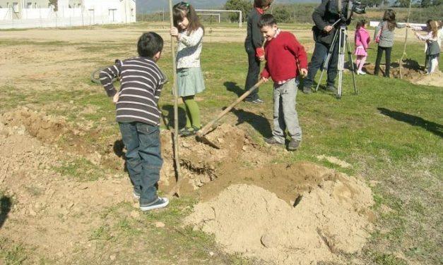 ARBA organiza diferentes talleres en Villanueva de la Sierra para celebrar la Fiesta del Árbol