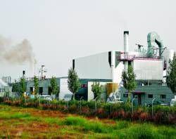El Ayuntamiento de Almaraz pedirá a la Junta que ordene el cierre cautelar de la incineradora de animales