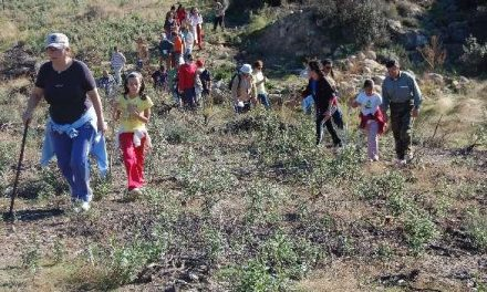 La undécima edición del Otoño Mágico del Valle del Ambroz estará dedicado este año a la magia y la leyenda