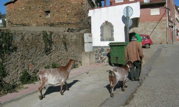 Agricultura concede 580.000 euros a los grupos de acción local para programas de desarrollo rural