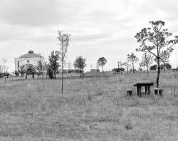 El parque de la Aurora se reformará y recuperará con la plantación de 800 árboles en Villanueva de la Serena