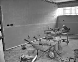 El nuevo curso escolar 2008/09 empezará con un único comedor para los escolares en Almendralejo