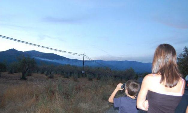 Un incendio forestal calcina medio centenar de hectáreas en los términos de Santibáñez y Torre