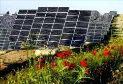 Comienza a funcionar en Extremadura la mayor planta fotovoltaica de dos ejes del mundo ubicada en Badajoz